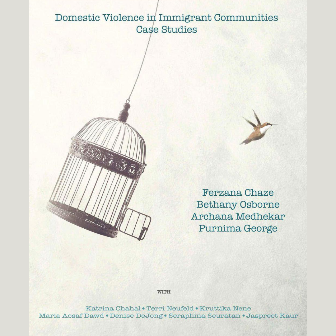 New Resource: Domestic Violence in Immigrant Communities: Case Studies